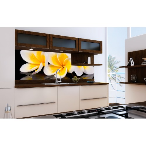 Принт стъкло за кухня модел 19064 орхидея