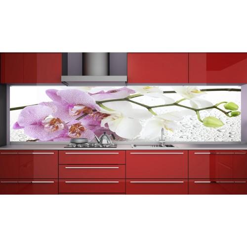 Принт стъкло за кухня модел 19110 орхидея