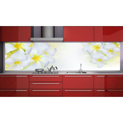 Принт стъкло за кухня модел 19116