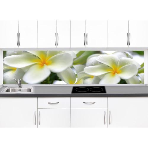 Принт стъкло за кухня модел 19300 цвете
