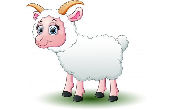 Стикери за стена на детска стая Модел 20059 овца яре