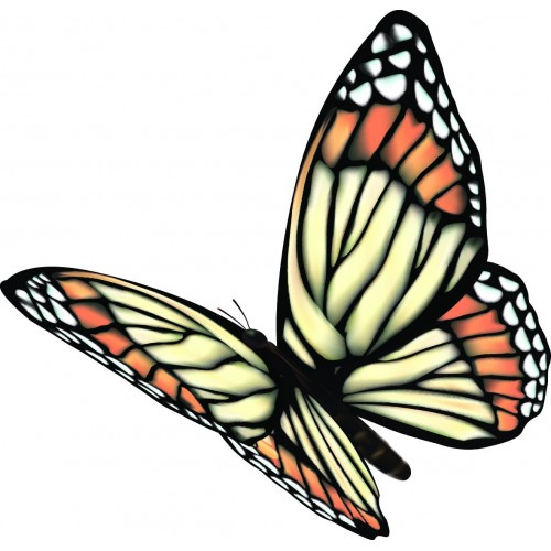 Стикер Пеперуда  Модел 20516