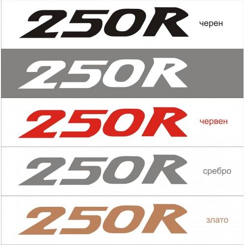 Стикер KAWASAKI 250 R модел 21611