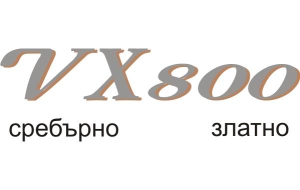 Стикер SUZUKI VX 800 2-ва цвята модел 21062